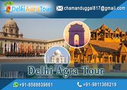 Delhi Agra Jaipur Tour Package  By Car