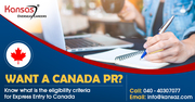 Want a Canada PR;  know what is the eligibility criteria for express en