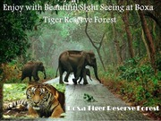 Enjoy with Beautiful Sight Seeing at Buxa Tiger Reserve Forest
