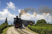 Darjeeling 2N-Gangtok 3N Perfect Tour for Romantic Getaways