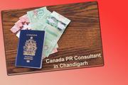 Canada PR Consultant in Chandigarh