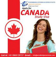 Best Canada Study Visa & Immigration Service In Chandigarh.