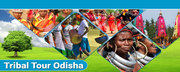 Mishra Tours & Travels Offers Bespoke Odisha Tour and Travels Packages